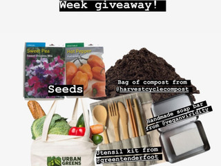 ZWP Earth Week Giveaway!