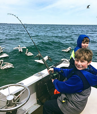 Kids see birds on North Myrtle beach Fishing Charters