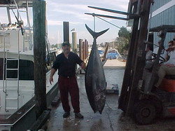 Captain Steve with big Blue Fin Tuna