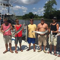 wise fishing charters bunch of Fish