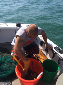 trawling net on fishing charter