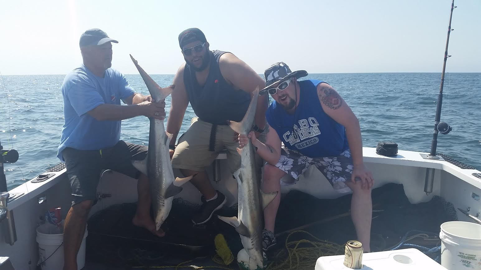 Group catches sharks on boat