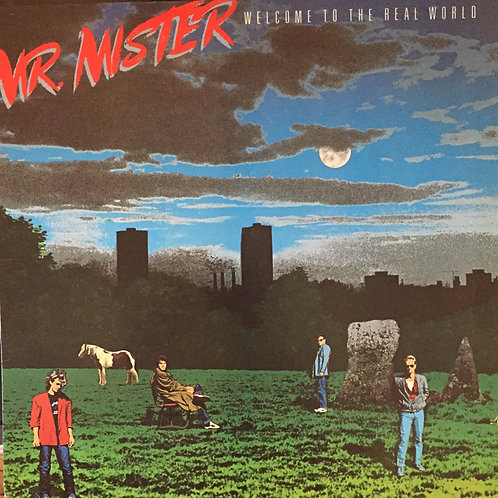 Mr. Mister Welcom to the real world