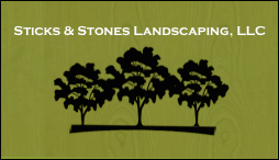 sticks&stones logo only.png