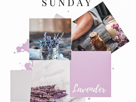 Self Care Sunday - Lavender Lip Balm Recipe.