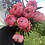 Thumbnail: Peony Wrapped Bouquet
