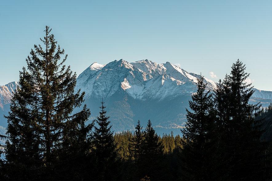 Alpenblick von Startgels