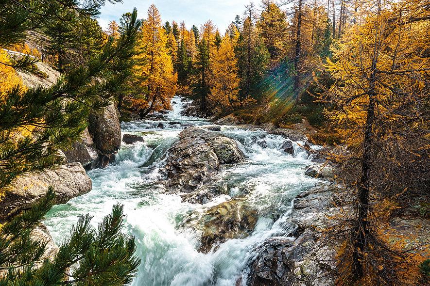 Wildbach beim Bernina