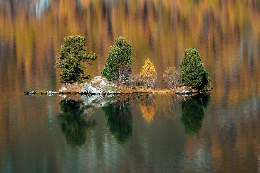 Baumgruppe auf dem Silsersee