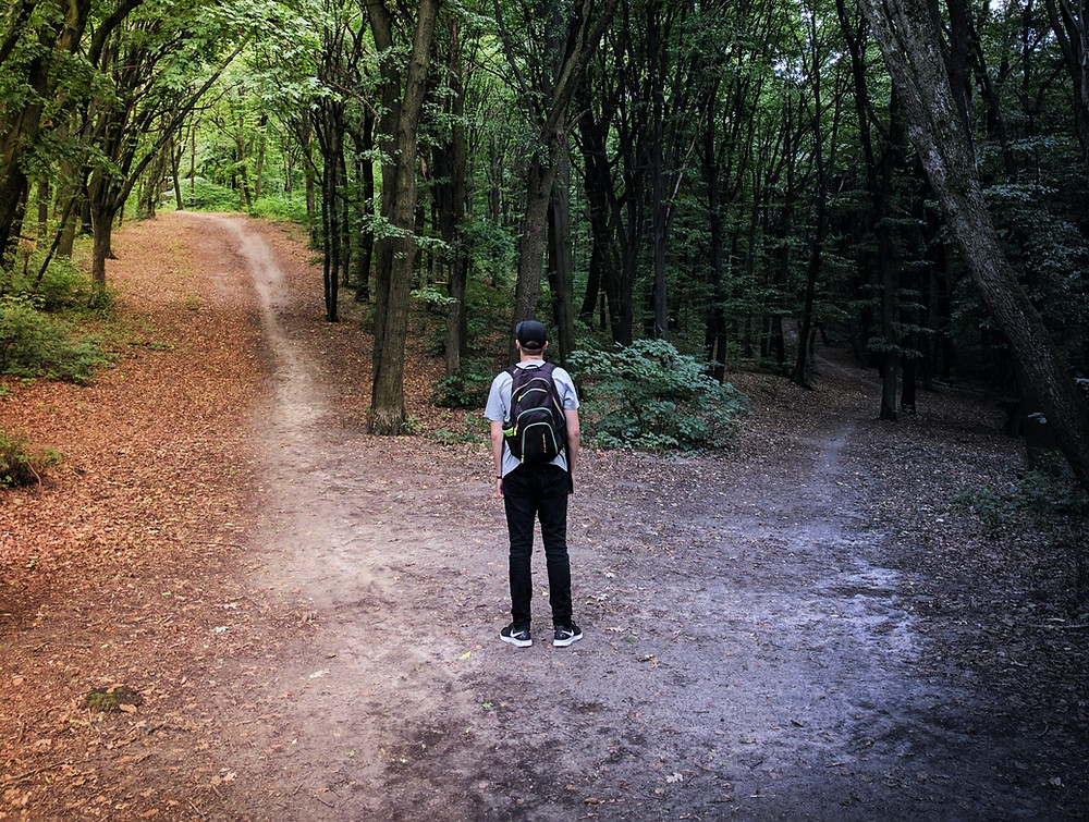Young man with backpack in forest standing at a crossroads of two paths