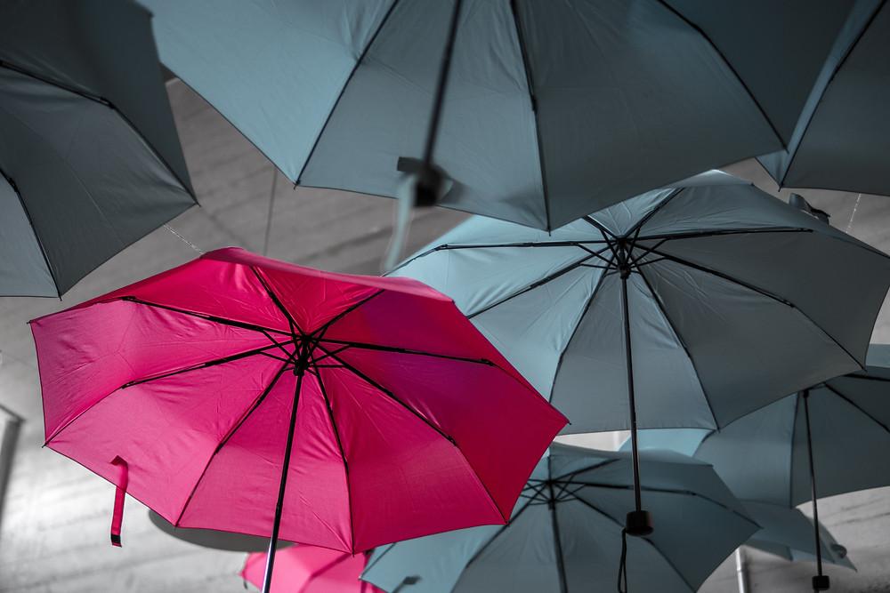Single bright pink open umbrella amidst several dark grey ones