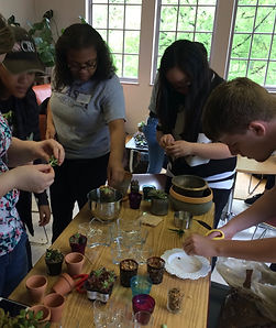 STARS students making succulent gardens