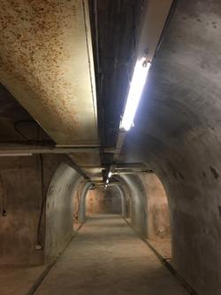 田町齋、西子隧_210119_40