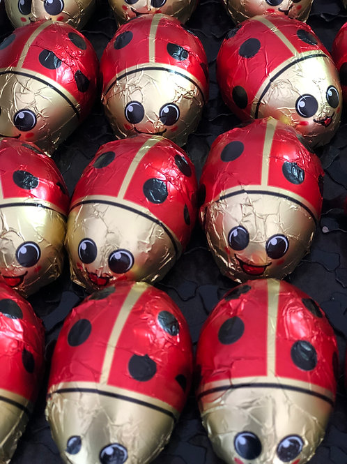 Ladybirds in a Tin