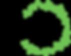 CV_Logo_4.png