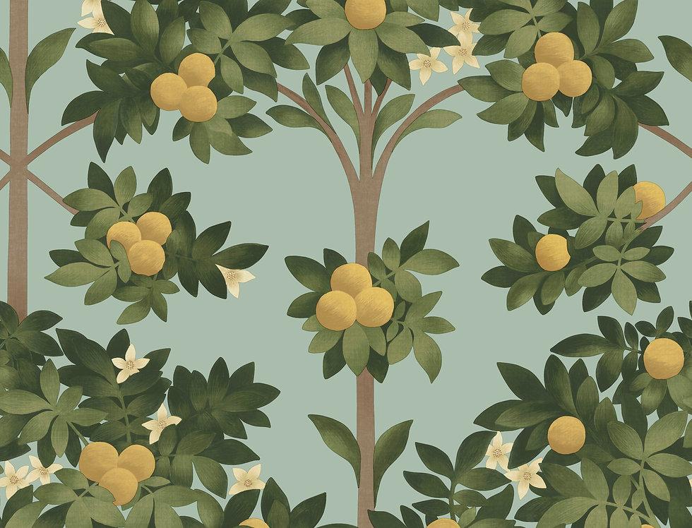 Cole & Son - Seville Orange Blossom Lemon & Dark Green on Duck Egg 117/1002