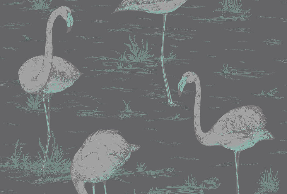 Cole & Son - Contemporary Restyled Flamingos Teal & Silver on Black 95/8048