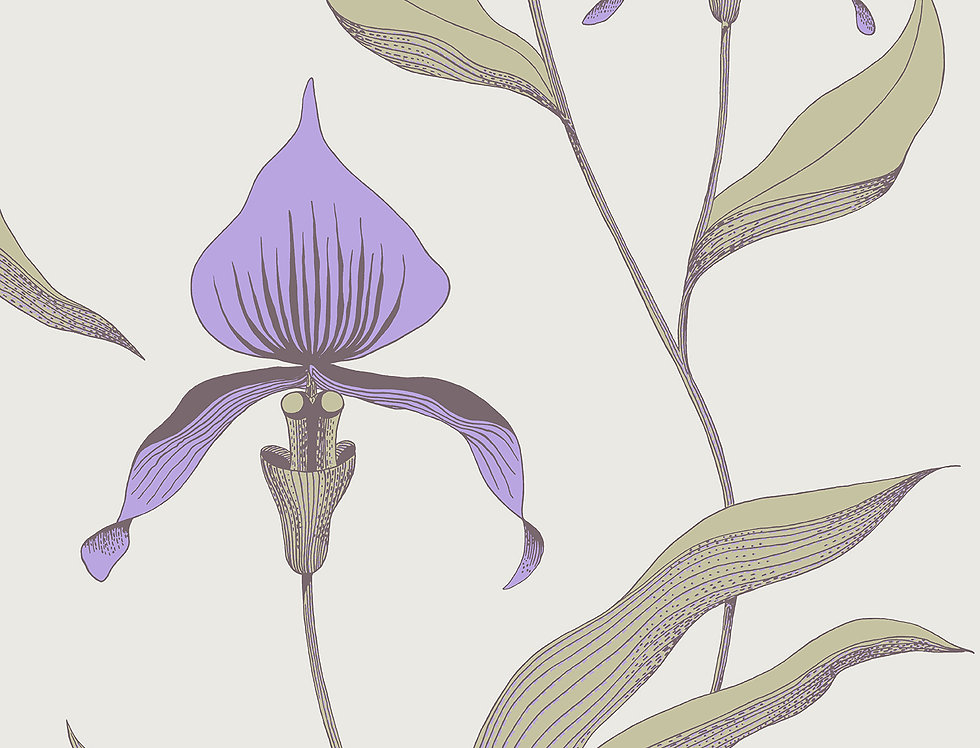 Cole & Son - New Contemporary Orchid Red 66/4024