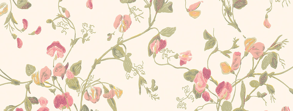 Cole & Son - Archive Anthology Sweet Pea Pink 100/6028