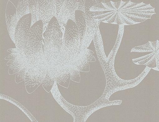 Cole & Son - New Contemporary II Lily White 69/3110