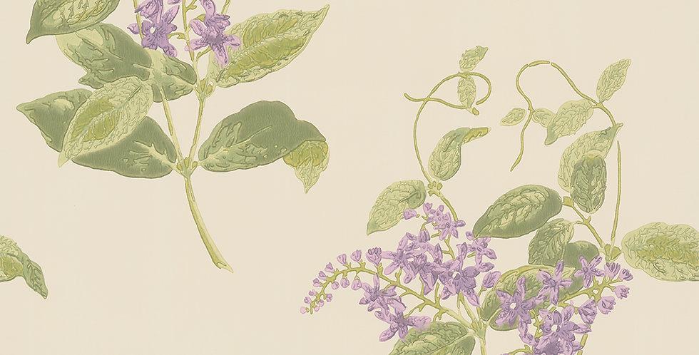 Cole & Son - Archive Anthology Madras Violet Olive & Lavender 100/12056