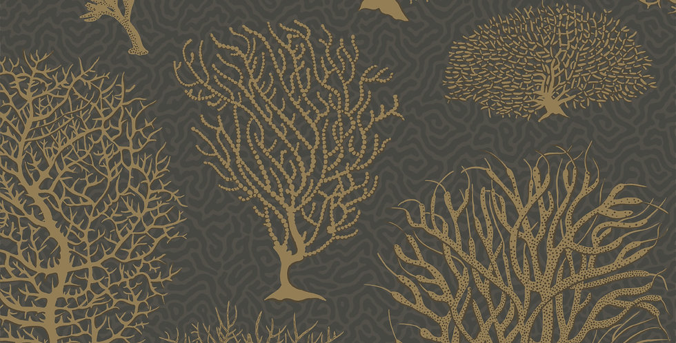 Cole & Son - Curio Seafern Black & Gold 107/2006