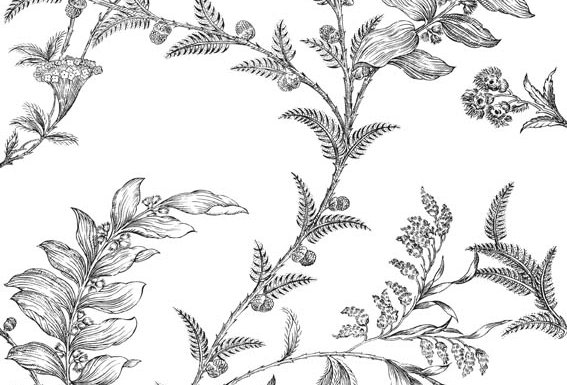 Cole & Son - Archive Traditional Ludlow White & Black 88/1005