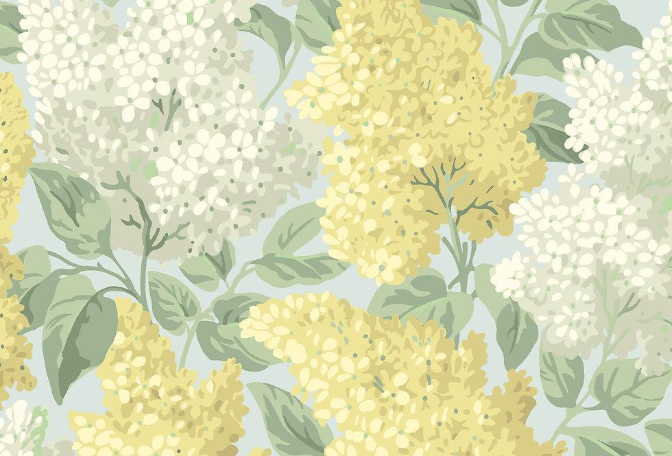 Cole & Son - Botanica Lilac Lemon & Old Olive on Print Room Blue 115/1003