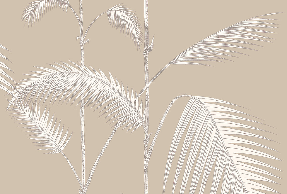 Cole & Son - New Contemporary Palm Leaves Beige 66/2013