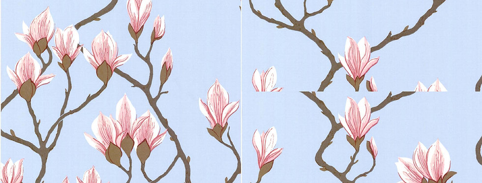 Cole & Son - The Contemp Coll Magnolia Rose on Sky Blue 72/3011