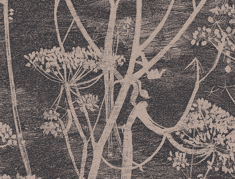Cole & Son - New Contemporary Cow Parsley Beige 66/7048