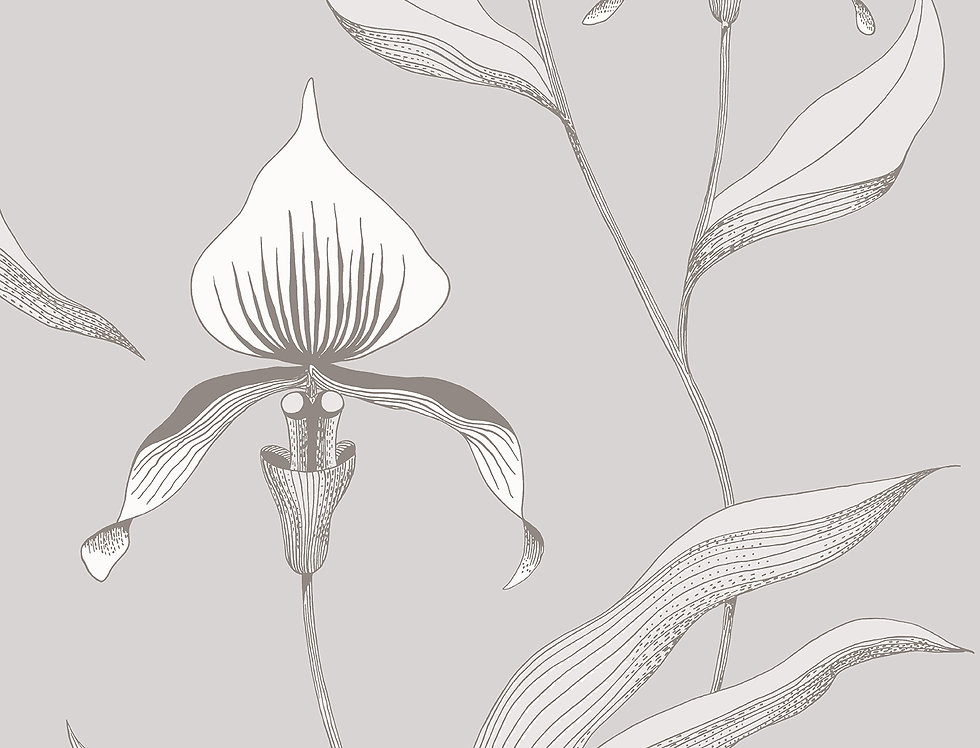 Cole & Son - Contemporary Restyled Orchid Grey & White 95/10055