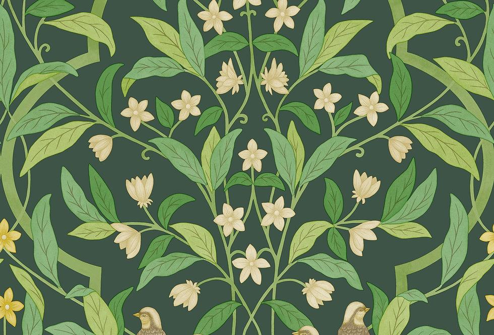 Cole & Son - Seville Jasmine & Serin Symphony Yellow on Dark Green 117/10029