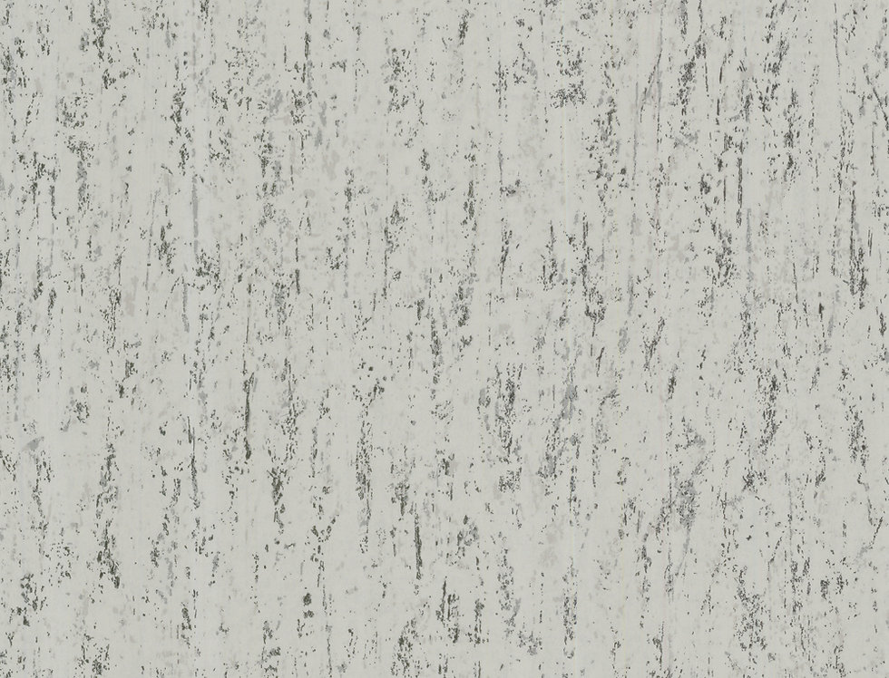Cole & Son - Foundation Concrete Grey 92/3011