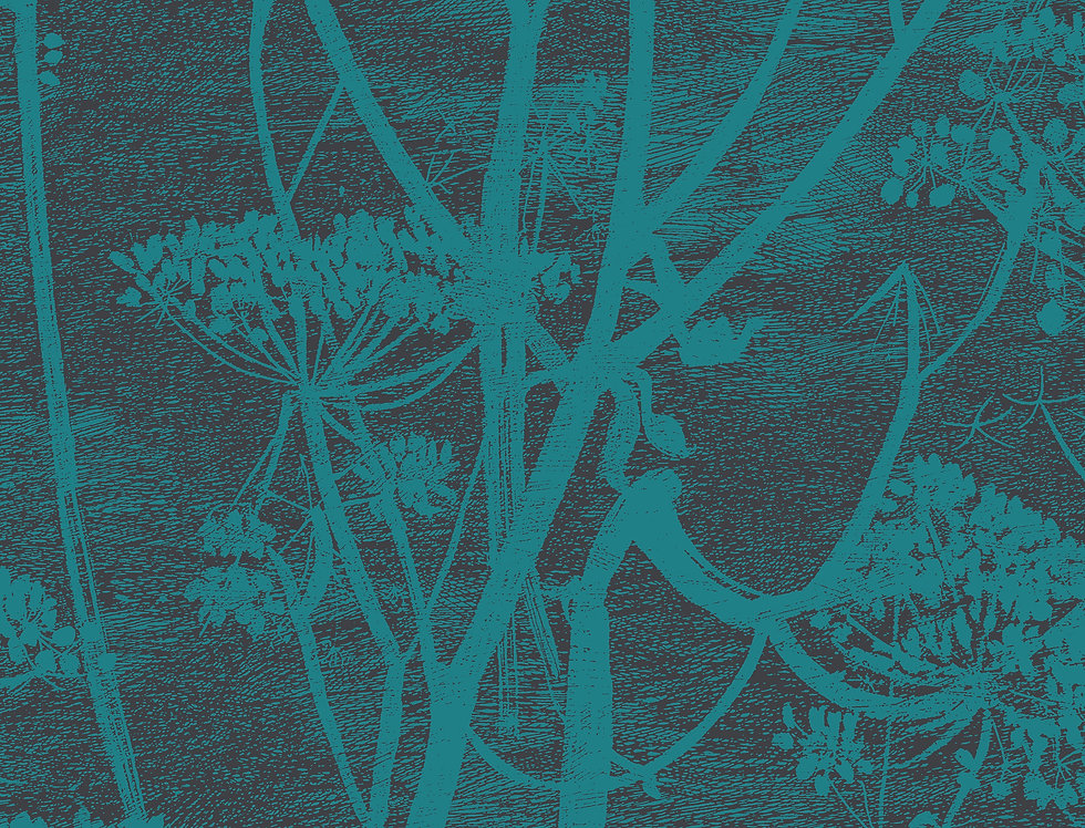 Cole & Son - Icons Cow Parsley Teal 112/8030