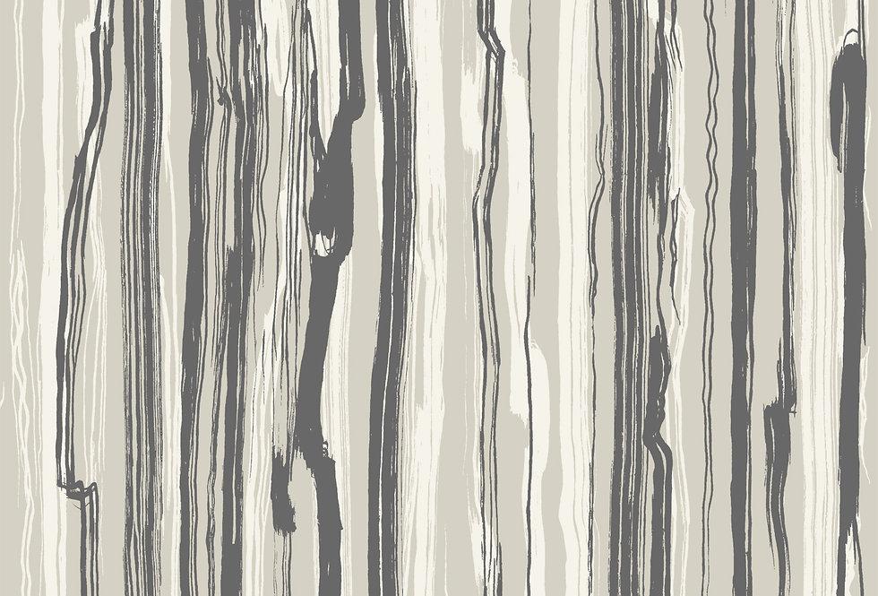 Cole & Son - Curio Strand Black & White 107/7035