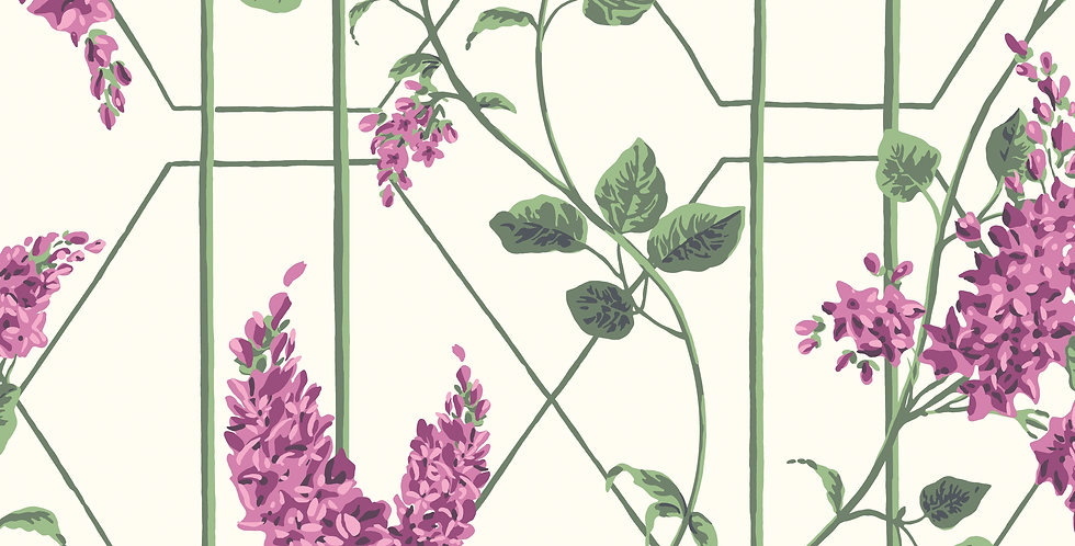 Cole & Son - Botanica Wisteria Magenta & Leaf Green on White 115/5013