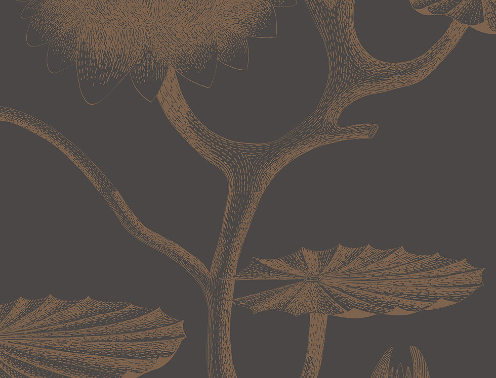 Cole & Son - Contemporary Restyled Lily Black & Bronze 95/4021