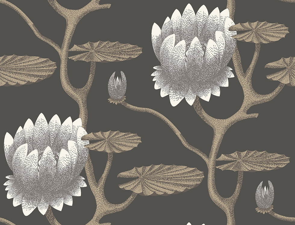 Cole & Son - Contemporary Restyled Summer Lily Black, White, Gold 95/4026
