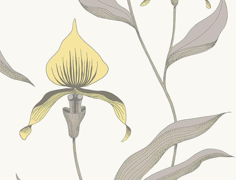 Cole & Son - Contemporary Restyled Orchid Yellow on White 95/10057