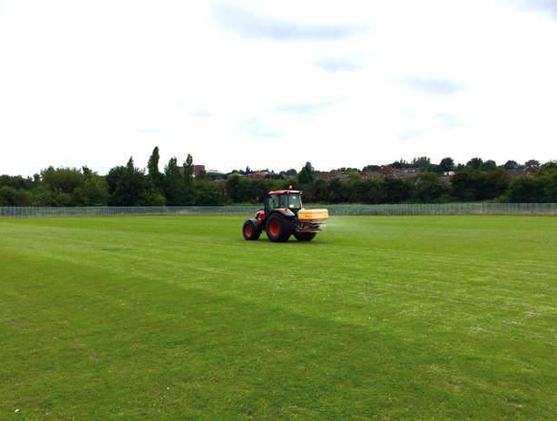 Grass Cutting and Maintenance