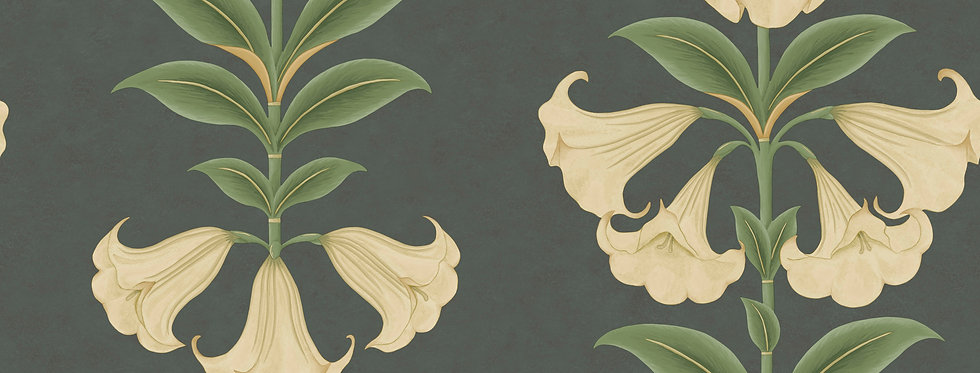 Cole & Son - Seville Angel's Trumpet Cream & Olive Green on Charcoal 117/3006
