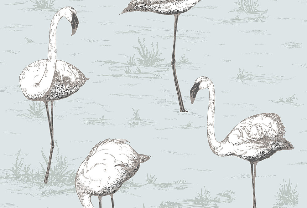 Cole & Son - Contemporary Restyled Flamingos Charcoal on Aqua 95/8047