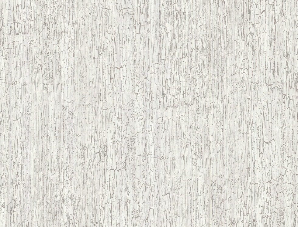 Cole & Son - Foundation Crackle Grey Cream 92/1001
