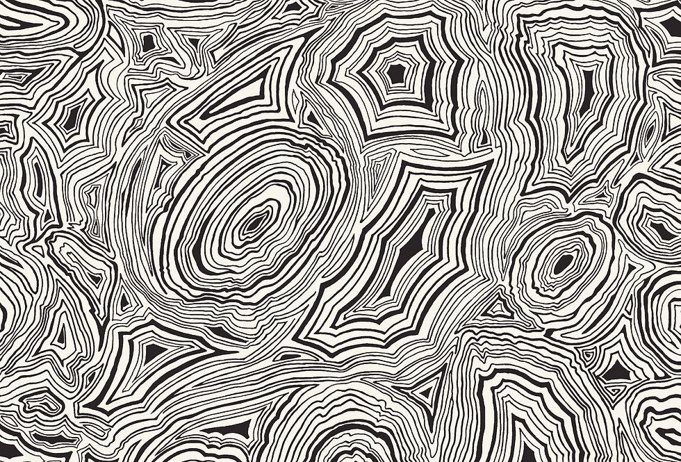 Cole & Son - Fornasetti Senza Tempo Malachite White & Black 114/17036