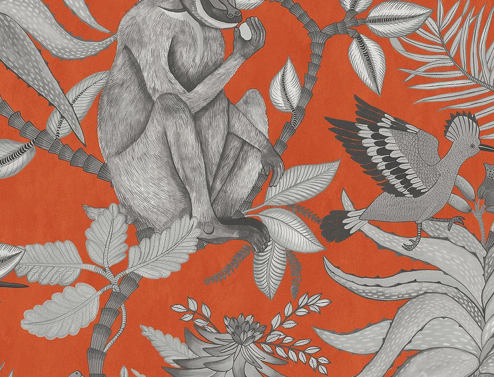 Cole & Son - Ardmore Savuti Orange 109/1001