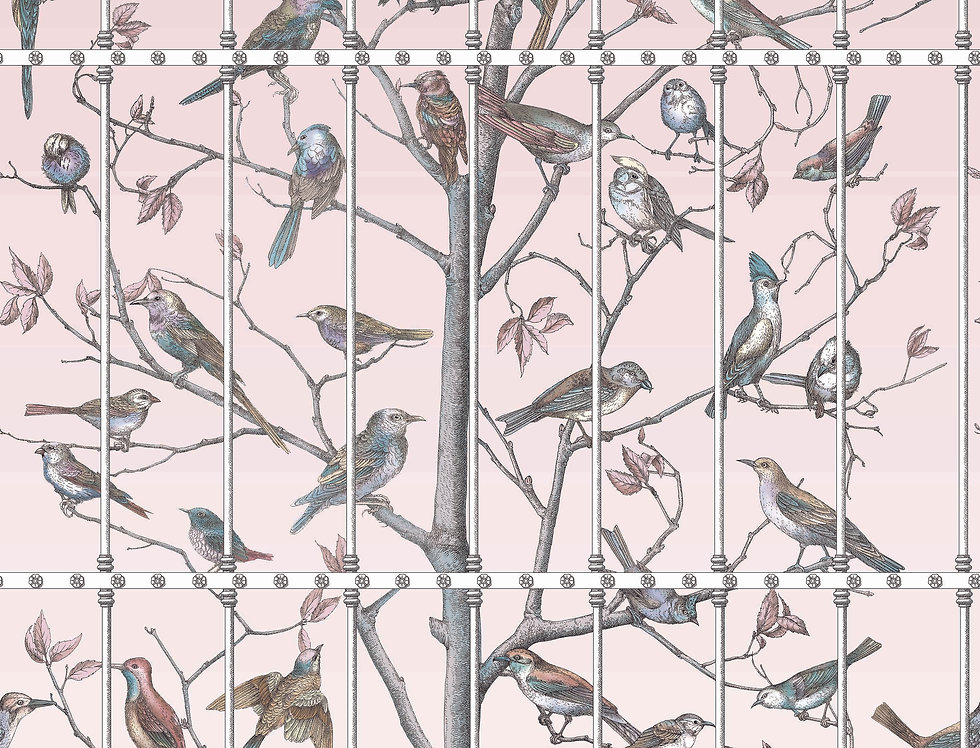 Cole & Son - Fornasetti Senza Tempo Uccelli Ballet Slipper 114/11022