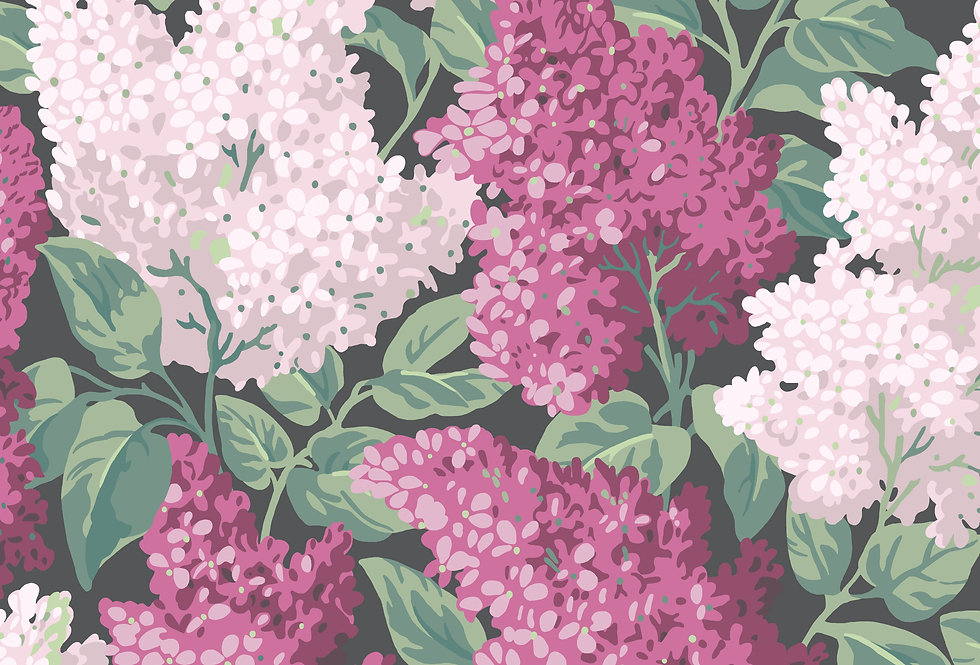 Cole & Son - Botanica Lilac Magenta & Blush on Charcoal 115/1001