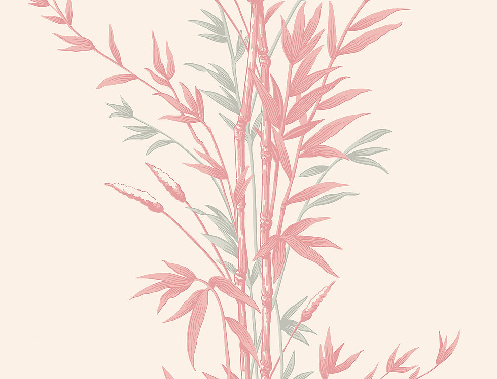 Cole & Son - Archive Anthology Bamboo Pink 100/5024