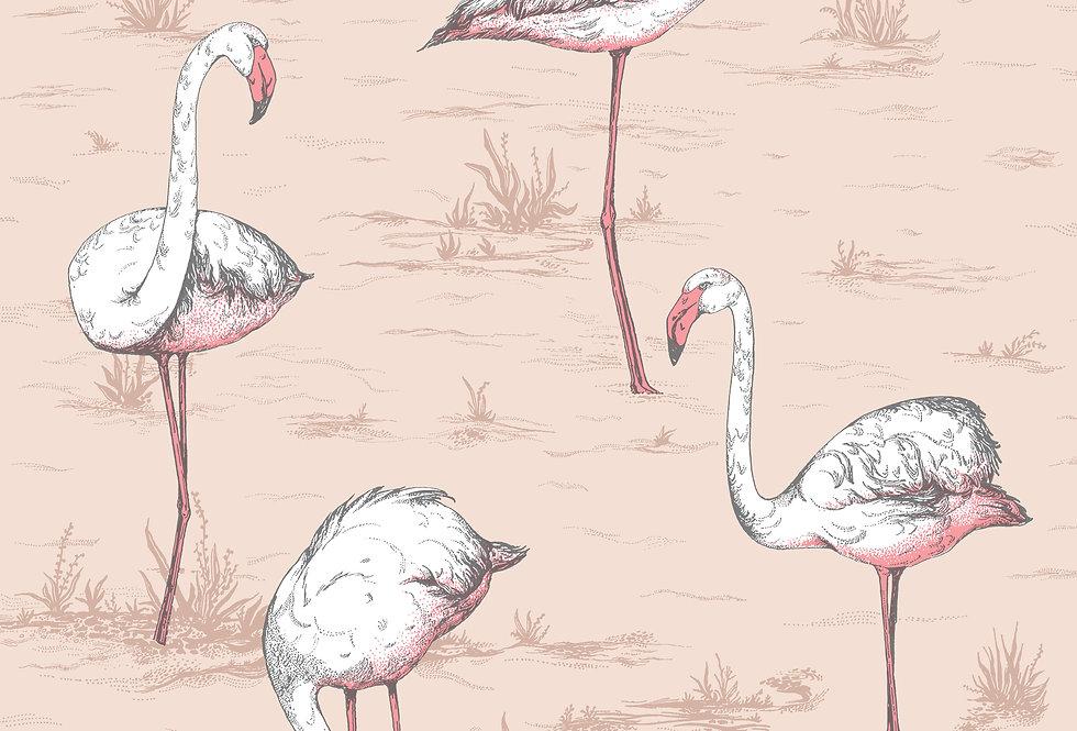 Cole & Son - Icons Flamingos Ballet Slipper 112/11039